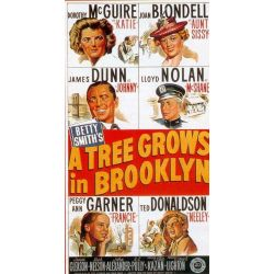 Affiche Le Lys de Brooklyn (de Elia Kazan)
