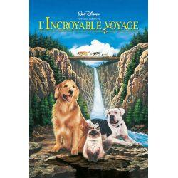 Affiche L'Incroyable Voyage 2, à San Francisco (Walt Disney)