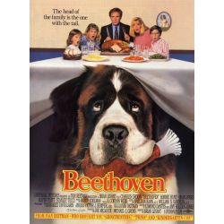 Beethoven (de Brian Levant)