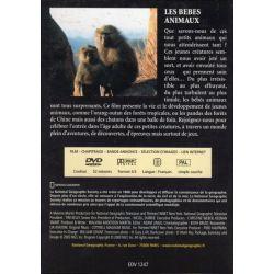 Les bébés animaux - National Geographic - DVD Zone 2