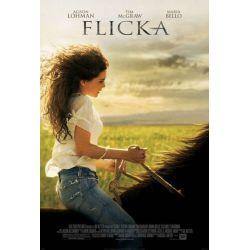 affiche film Flicka (de Michael Mayer)
