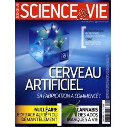 Science & Vie n° 1145 - Cerveau artificiel, sa fabrication a commencé !