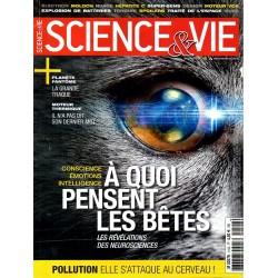 Science & Vie n° 1192 - A quoi pensent les bêtes, les révélations des neurosciences