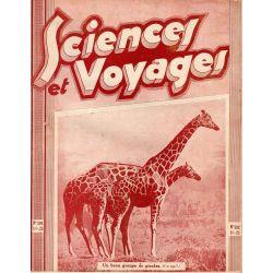 Sciences et Voyages n° 592 - 01 janvier 1931 - Un beau groupe de girafes